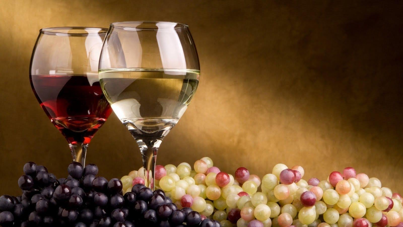 Cave à vin : Toutes les raisons pour lesquelles je vous recommande de vous équiper avec une cave à vin